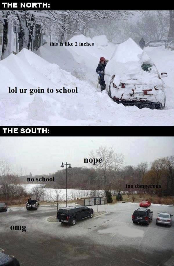 no school edit